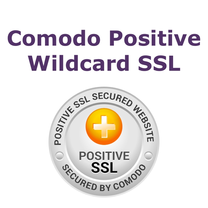 Positive Wilcard SSL Certificate (Annual Fee)