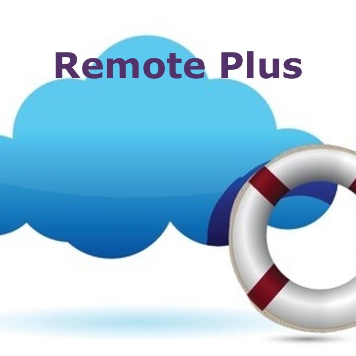 Remote Plus (Annual Fee)